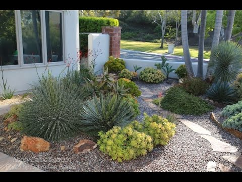Design Ideas from an Award-Winning Succulent Garden
