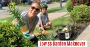 FINALLY! Front Yard Gardening Makeover - On A Budget | BEFORE AND AFTER