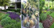 20 Simple DIY Landscaping Ideas for Your Home on the Cheap | garden ideas