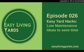 ELY 026 - Low Maintenance Landscaping Ideas